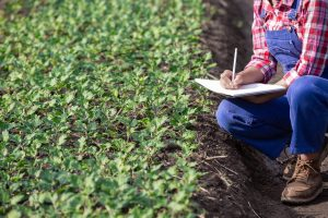 210505 InfoBio Benchmarking of Support Measures for Organic Farming - Featured Image